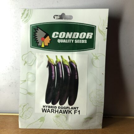 condor quality seeds