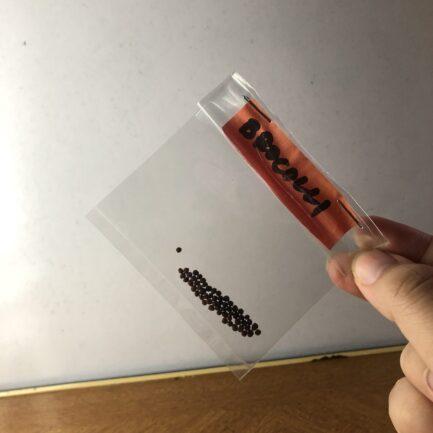 Brocolli Seeds