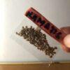 Kamatis Seeds