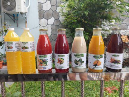 natures juices